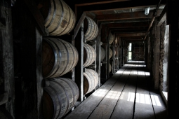 BuffaloTrace_07